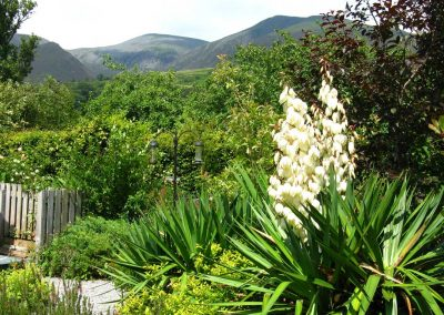 Croft Corner garden and view to Skiddaw