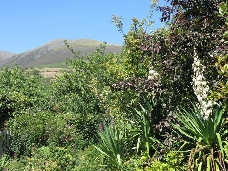 Croft Corner garden and the view to Skiddaw